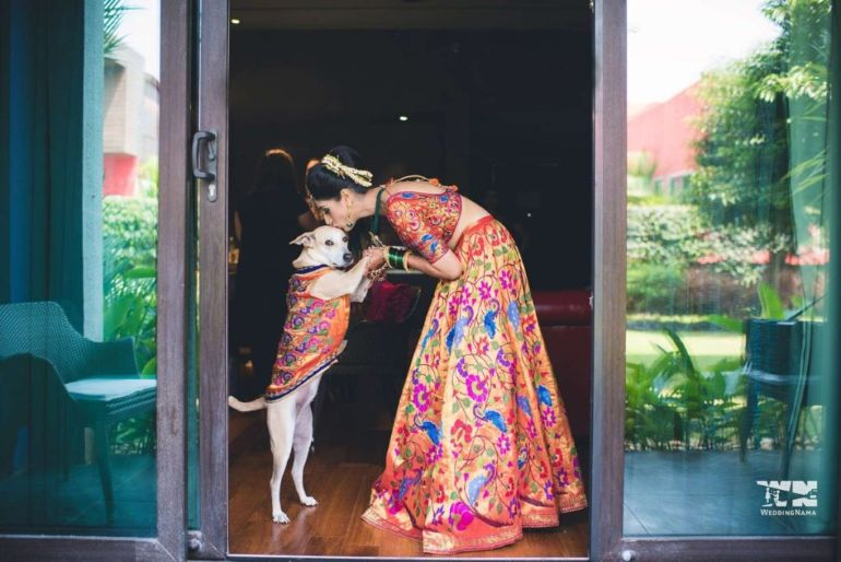 Bride-with-Pet-WeddingNama