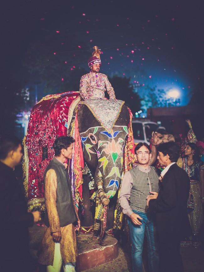 18aa indian wedding baraat elephant